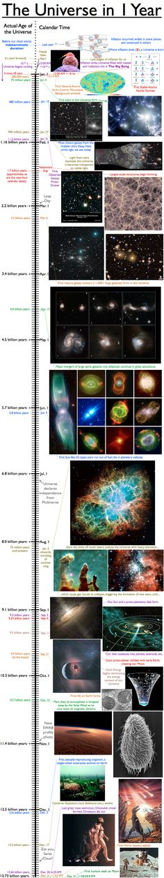 History Of The Universe Compartmentalized In 1 Year