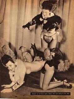 Showgirls and chihuahuas.