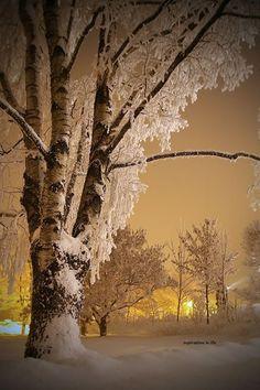 Let it snow ~