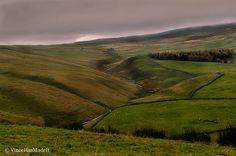 Verden Green English Moors   | Flickr - Photo Sharing!