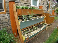 vertical raised growing boxes