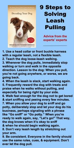 9 steps to solving leash pulling #dogs #pets Check out Dieting Digest