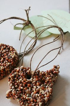 Homemade bird shaped bird seed cakes as thank you favors. And Everything Sweet: Feather her nest!!!