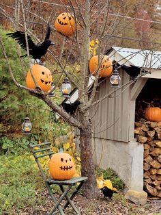 Bare-limbed trees provide the perfect ghostly perch for jack-o'-lanterns, LED candle lanterns, and a flock of faux black crows (don't be surprised if a few real ones alight).