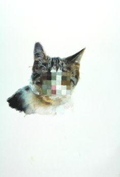"Saatchi Online Artist: Isobel Wood; Oil, 2012, Painting ""temperament 1"" #art #cats"