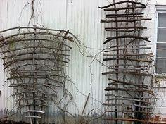 more driftwood trellis....