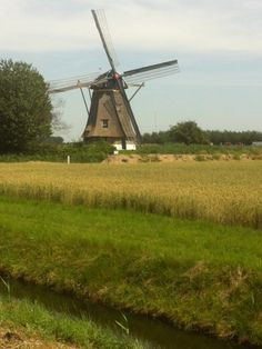^All mills in the Netherlands have their wicks in mourning mode following the tragic plane crash  MH17 in Ukraine on July 17, 2014