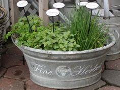 sweet little herb garden