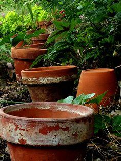 Line of pots in the garden