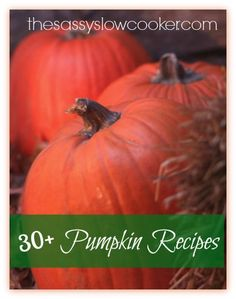 Pumpkin recipes that will get you into the Autumn mood!