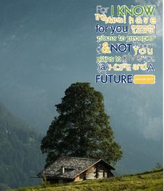 Jer. 29:11 - made by Dave L Walli with Bazaart #collage