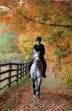 (via vickaf)  The best thing in the fall is to ride.  Crisp air and a good horse.