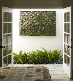 """Our installation here at the nursery was done by a contractor who started with a panel of MDO (marine plywood) as backing. He then mounted it with French cleats (included with each vertical panel) – a common construction method to """"float"""" the garden off the wall with an air space behind it for ventilation. The frame on our own vertical garden was created by mounting the wood frame (redwood, driftwood, etc.) directly to the back panel of plywood after the panels were mounted."""