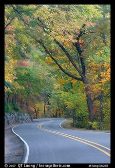 Autumn on West Mountain. Hot Springs National Park, AR / Terra Galleria #Arkansas #scenic #vacation #South #Southern