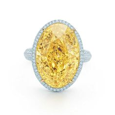 This would look good with my Easter outfit. Ring in platinum and 18k gold with a 15.04-carat yellow diamond. | Tiffany & Co.