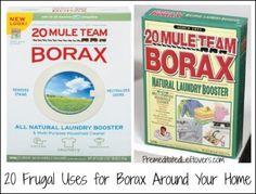 20 Uses for Borax