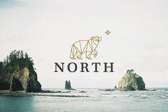 North - Logo Design - Polar bear, Star, Polygon, Geometric, Logotype, Logomark, Identity, Beige, Black logos design