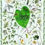 Don't Forget About Herbs for Your Health