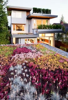 Use a #green roof to beautify your #eco-friendly home