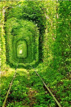 Tunnel of Love in Kleven, Ukraine [7 Pics].