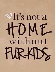 Having pets is what makes a home.