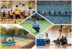 Cazenovia expands their club sports offerings for the 2014-15 seasons! Click the photo to find out more. #WildcatsAthletics