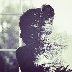silhouett, green garden, shadow, art, black white
