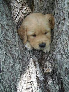 Uh oh.. I'm stuck!
