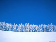 Snow backgrounds