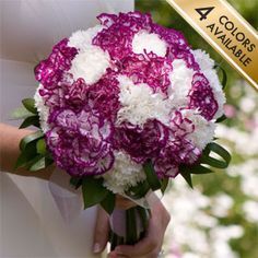 How about carnations as wedding flowers?
