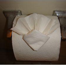 Toilet Paper Origami Diamond Fan