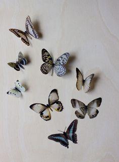 Vellum Moths Step 3