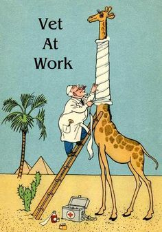 VETERINARIAN AT WORK, GIRAFFE, SORE THROAT, MAGNET, HUMOROUS COMIC from postcard