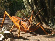 Saltapalo. De la exposición Grandes insectos de David Roger, en el Jartín Botánico del Desierto, Phoenix, AZ