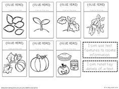 pumpkin life, interact notebook, interactive notebooks, life cycl