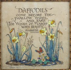 The daffodil is the Welsh flower.