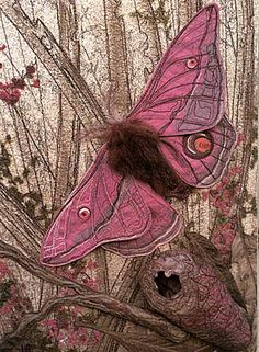 PINK EMPEROR GUM MOTH II#Repin By:Pinterest++ for iPad#