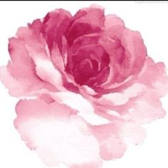 My grandpa brought a rose to my grandma every day.  On the day she died, he asked the coroner to wait a moment before taking her away.  He went to the backyard, picked a rose, placed it on her chest and kissed her goodbye. tattoo ideas, watercolor tattoos, rose tattoos, art, roses, watercolor flowers, paint, a tattoo, peoni