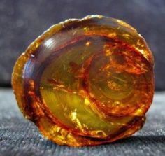 natural amber speciman amberlov jewel, sacr stone