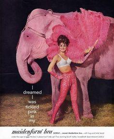 Maidenform dreamed tickled pink