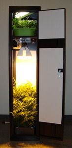 Must be a way to DIY one of these: Super Locker 3.0 - 8 Plant Vertical Grow Box