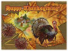 fall leaf holiday thanksgiv, fall leaves, greet card, vintag card, vintag thanksgiv, happi thanksgiv, fall leaf, fall card, autumn stuff