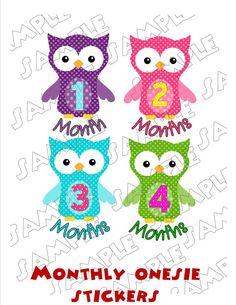 Owls Monthly Onesie Stickers Polka dots