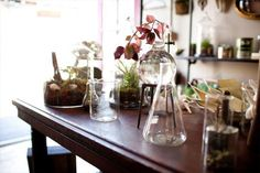 Calling All Gardeners: What's Your Favorite Shop? Gardenista