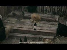 ▶ Nueva Andes Barley Wine - YouTube