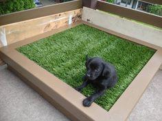 DIY Porch Potty