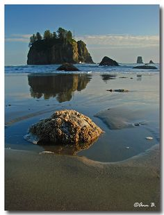 Second Beach, Washington State.