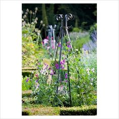 The herb garden at Ballymaloe Cookery School - the entire garden is managed organically http://www.organicholidays.co.uk/at/3210.htm