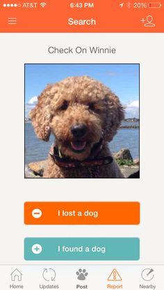 Finding Rover-An app to find lost dogs