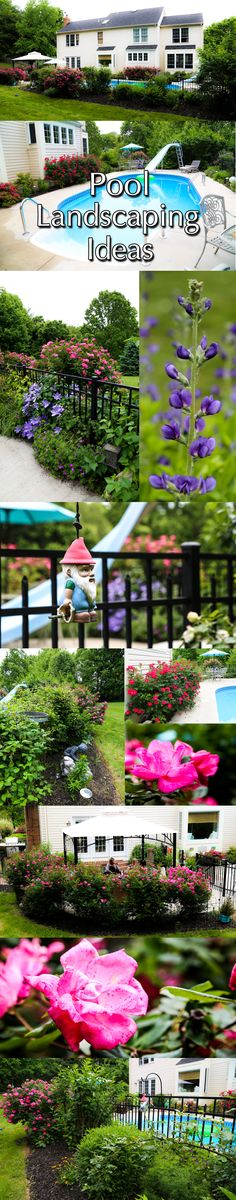 Pool Landscaping Ideas | Landscaping Ideas Around Pools | Decorative Stone | Landscape Stone Carroll County